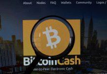 BCH Site