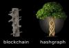 O que é Hashgraph