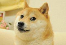 inventor da Dogecoin