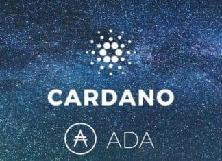 Cardano - parcerias do projeto