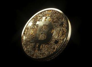Fundamentos do Bitcoin estão mais fortes do que nunca, diz CEO da Pantera Capital