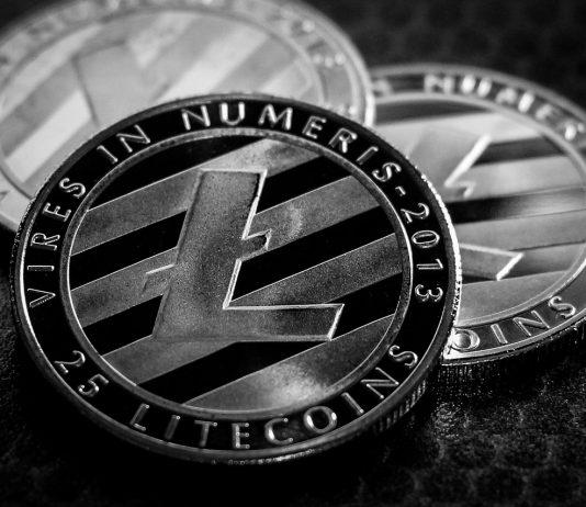 Após grande valorização da Litecoin, fundação convoca comunidade