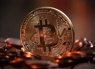Mais maximalistas de Bitcoin surgem a cada dia