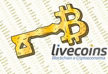 Quais são as carteiras de Bitcoin? Conheça aqui