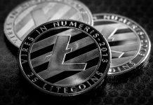 Semelhanças entre Litecoin e Dogecoin, segundo Binance Research