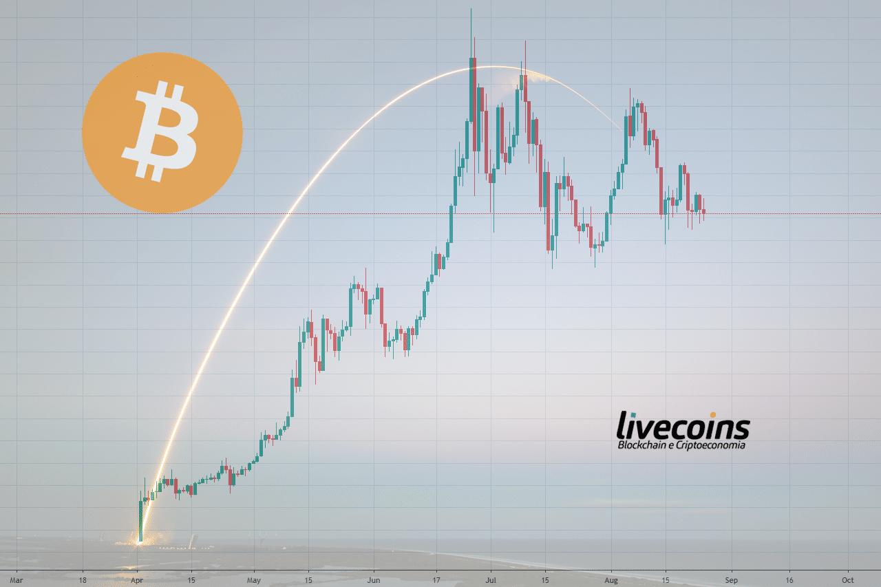 O Preco Do Bitcoin Nunca Olha Para Tras Afirma Estudo Livecoins