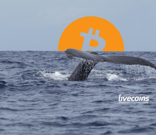 Baleia de Bitcoin são os grandes detentores da moeda digital