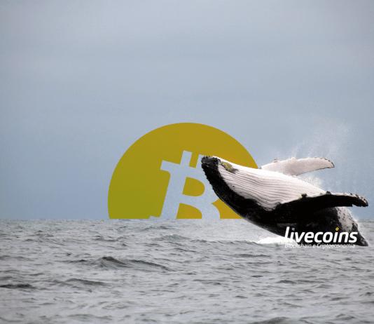 Baleia de Bitcoin