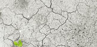 Mudança do Clima - Deserto