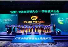 Pirâmide Plus Token atuava na China