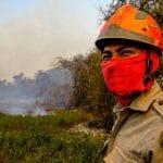 Pantanal pegando fogo queimadas bitcoin