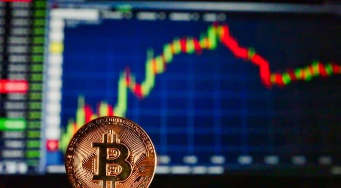 Traders de Bitcoin guia