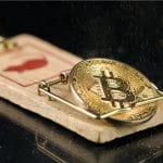 Bitcoin em ratoeira problema