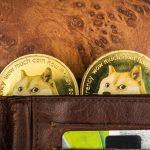 Carteira com duas criptomoedas Dogecoin dentro