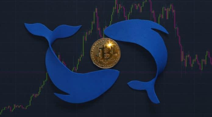 Movimentos de baleias em gráfico do Bitcoin