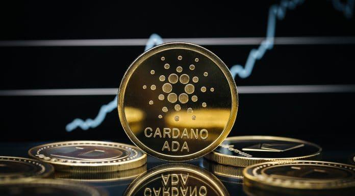 Cardano em pé e outras moedas deitadas preço cotação alta baixa gráfico