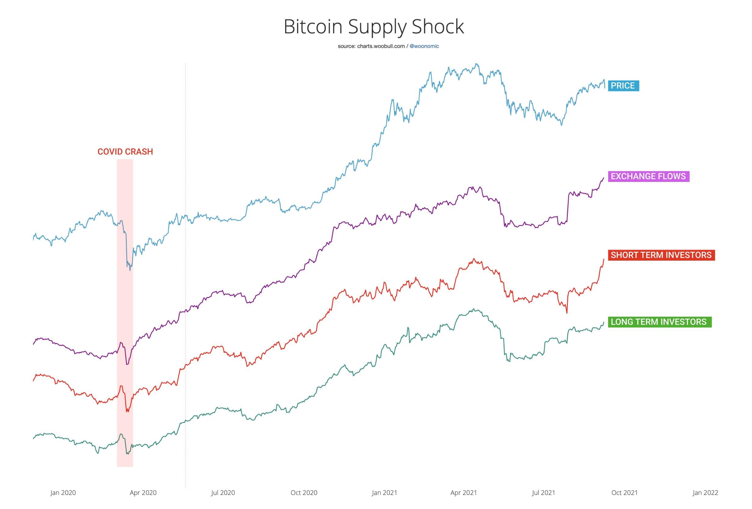 Analista Willie Woo sobre queda na cotação do Bitcoin